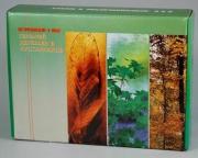 Гербарий деревьев и кустарников (20 видов) формат А-3