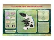 """Электрифицированный стенд """"Устройство микроскопа и правила работы c ним"""""""