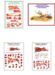 "Плакаты ПРОФТЕХ ""Разделка мяса"" (8 пл, винил, 70х100)"