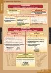 """Таблицы демонстрационные """"Литература 5-11 классы"""" (Теория литературы"""