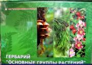 """Гербарий """"Основные группы растений"""" (52 листа) формат А-4"""