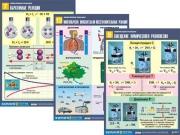 "Комплект таблиц по химии дем. ""Химические реакции"" (14 табл.,формат А1, ламинир.)"