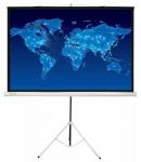 Экран напольный Cactus 150x150см Triscreen CS-PST-150x150 1:1